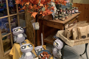 Grasshoppers Garden Center has Fall Gifts