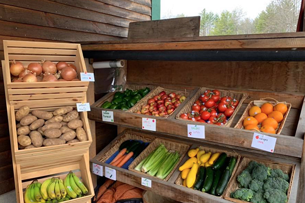 Grasshoppers Garden Center has fresh produce