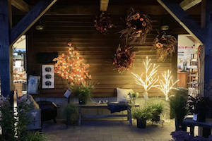Grasshoppers Garden Center has Outdoor Lighting